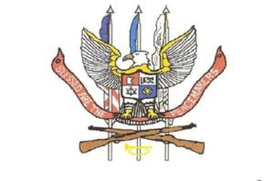 honor guard applications
